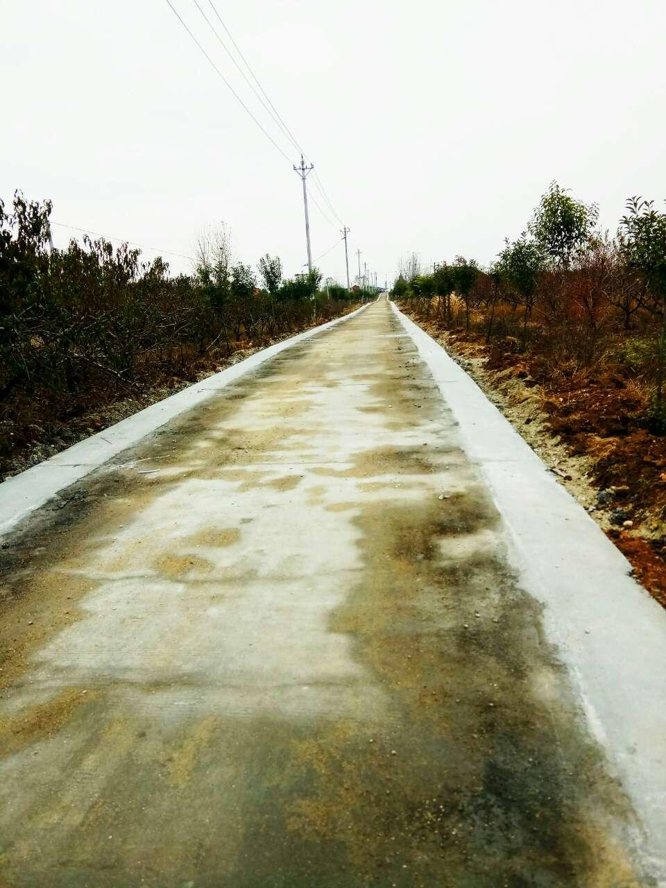 唐鎮至華寶山風景區公路全線擴寬與部分翻修正在進行時